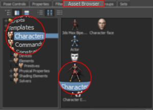 Character Asset