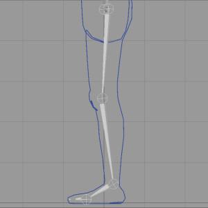 Globally Straighten the Legs